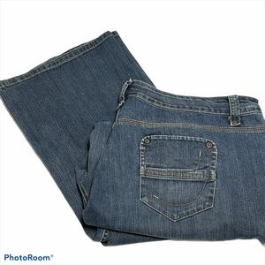 Gloria Vanderbilt  Straight Leg Jeans Blue 20W